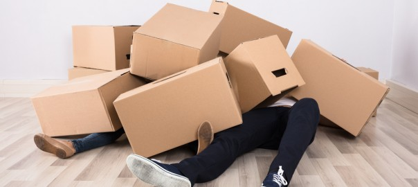 A photograph of a couple covered in cardboard boxes.